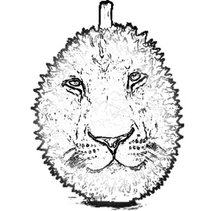 Durian & the Lyon face logo
